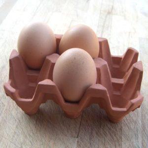 Egg Rack (6)