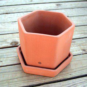 Single Hexagonal Herb Pot