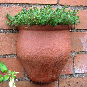 Rustic Wall Pot